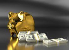 prasatko s dolary